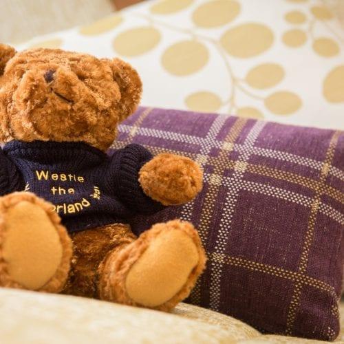 Westmorland Club Bear